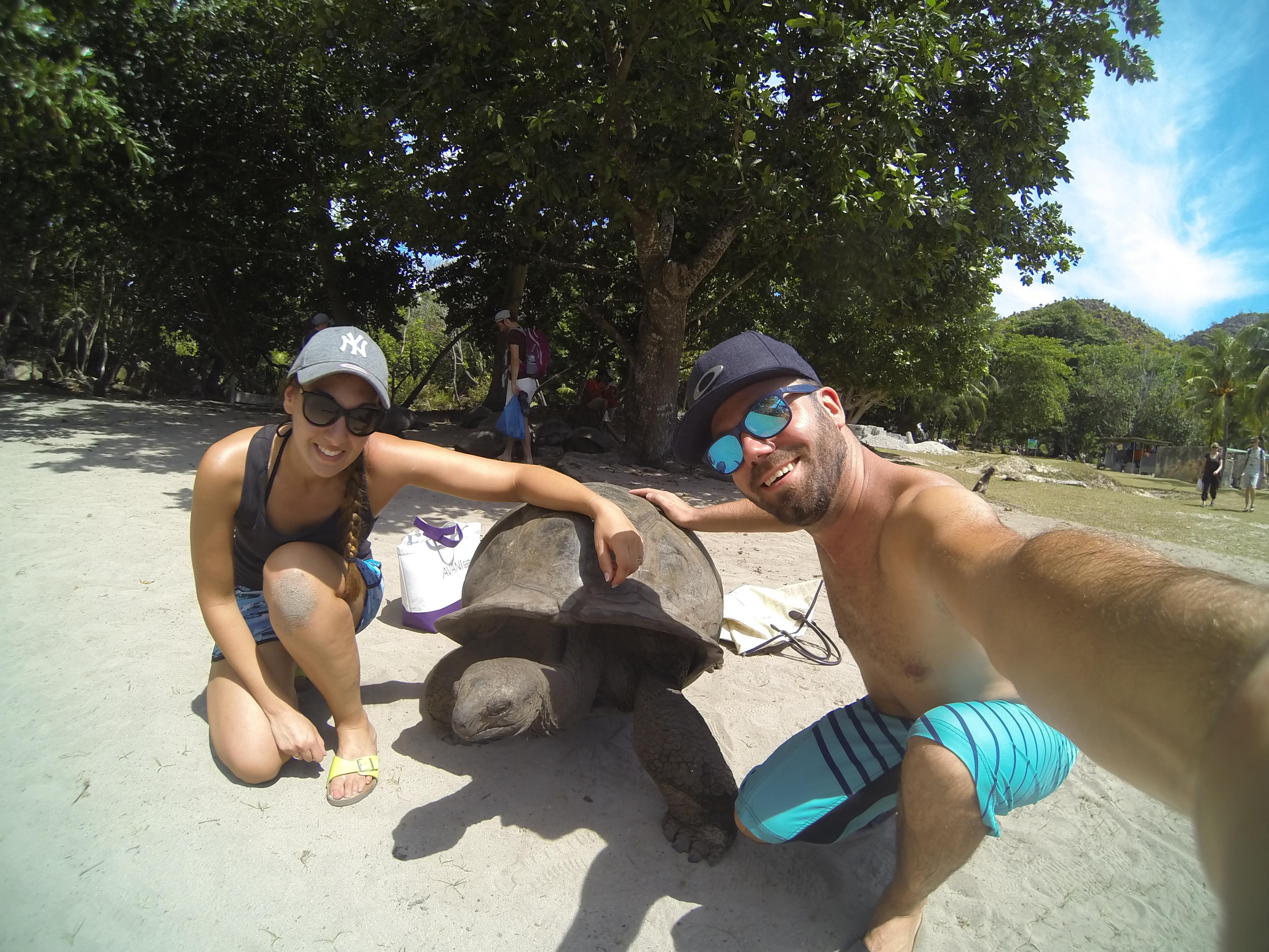 Une tortue Géante à Curieuse Island